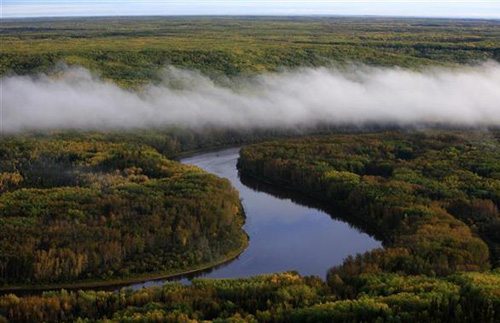Awesome Win For Canada's Boreal Forest