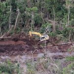 Will notorious forest destroyer Sinar Mas come clean?