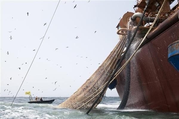 Campaigning to save the oceans by changing European fishing