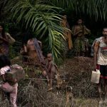 Isolated by forest conflict, the Orang Rimba people of Jambi
