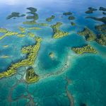 Esperanza for Pacific Oceans, Pacific People, Pacific Lives