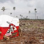 KFC's Chainsaw Colonel visits Indonesian rainforest destruction
