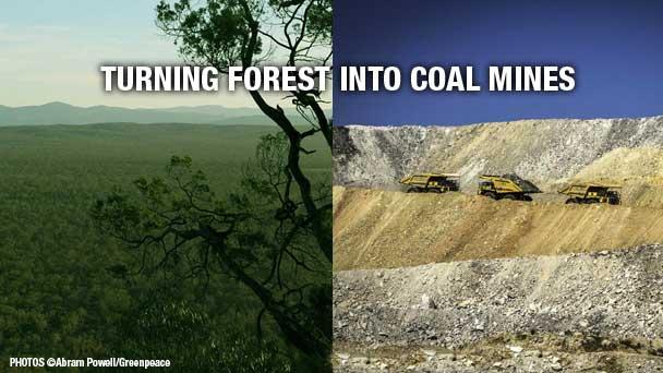 ©Abram Powell/Greenpeace