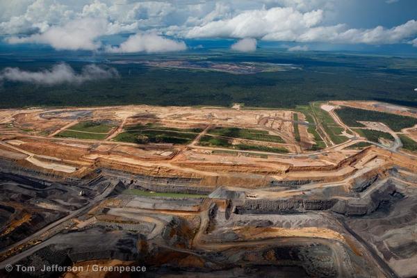 Queensland Coal Development
