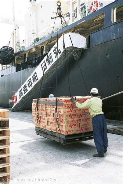 Man handles a pallet of boxes coming off the Nishin Maru, a ship operated by a private organization set up by Japan's whaling industry and subsidized by the Fisheries Agency of Japan.