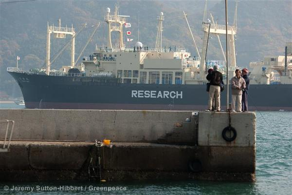 Late Departure of Japanese Whaling Ship