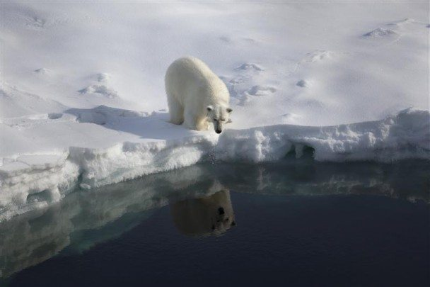 Ice and oil should stay in the Arctic