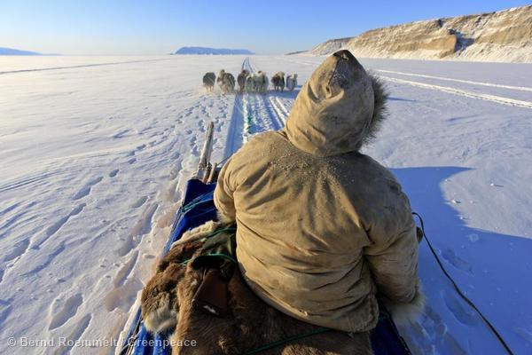 Inuit with dog sleigh Inuit im Hundeschlitten