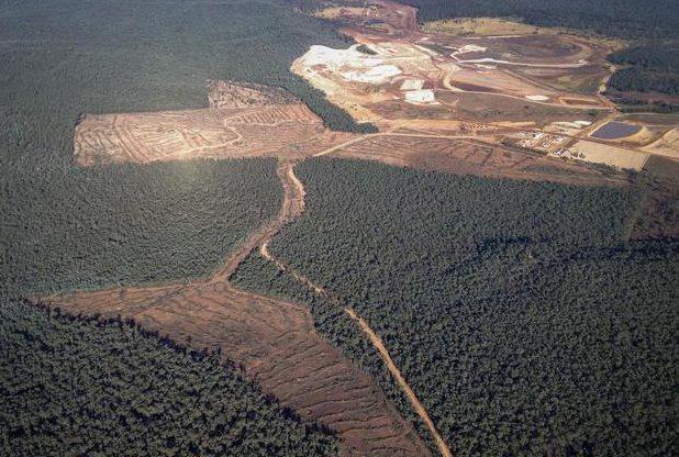 Coal Dead Hand - Greenpeace Australia Pacific