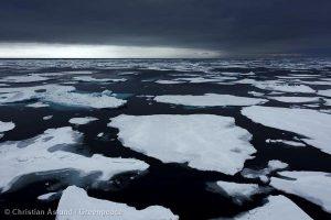 Arctic Oil: The verdict is in