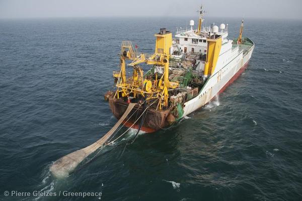 Cornelis Vrolijk Fishing Vessel near Mauritania