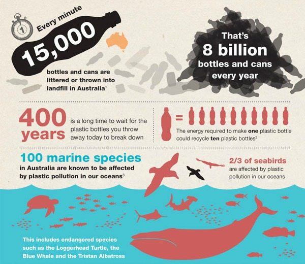 Death By Plastic Why Are Turtles Dying Near Sydney