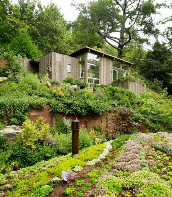 Mill Valley Cabins rooftop gardens, California, USA