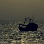 Who's paying for your cheap seafood? 5 things you can do about slavery in your seafood supply chain