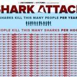 Shark attack: Here's how many sharks humans kill every hour