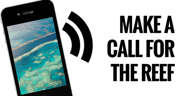 MAKE A CALL FOR THE REEF