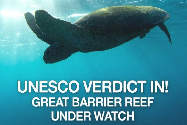 UNESCO has made its call on the status of the Great Barrier Reef. What does it mean, and what now?