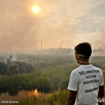 Choked in smoke – living in the thick of Indonesia's haze