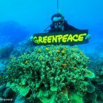 Queensland government has put more than just the Reef at risk