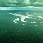 Damn the Dams: Why we need to say no to flooding the Amazon