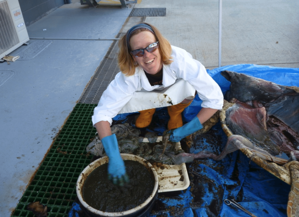 Dr Qamar Schuyler performing a necropsy on a dead turtle to see if it ingested plastic debris.
