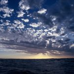 Why we can't let oil companies loose in the Great Australian Bight