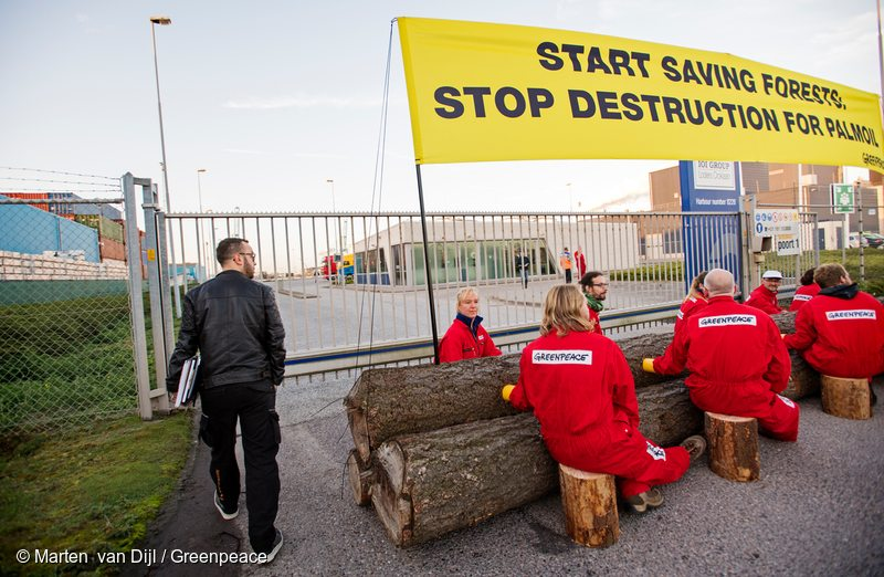 "Greenpeace activists close off access for all imports and exports from palm oil trader IOI in the harbour of Rotterdam, palm oil's gateway into Europe. Two Indonesian men who have been directly affected by forest fires are blocking access to the refinery with eight Greenpeace activists. At the left side sits Nilus Kasmi Seran (Nilus). He is an indigenous Dayak man from Ketapang, West Kalimantan, and is an architect by profession. Adi Prabowo (Bowo) is sitting second left. He is a member of the Forest Fire Prevention (FFP) team. He comes from Kubu Raya, West Kalimantan. Above the activists sitting on large tree trunks, a banner reads: ""Start saving forests: stop destruction for palmoil"". Greenpeace actievoerders blokkeren de toegang tot de palmolie raffinaderij IOI in Rotterdam zowel aan de voor- als aan de achterzijde. Aan de voorzijde doen zij dit m.b.v. een paar boomstammen waaraan 10 actievoerders zich hebben vastgeketend. Twee van de actievoerders komen uit een van de gebieden in Indonesie waar de branden woeden. Helemaal links zit Nilus Kasmi Seran (Nilus). Hij is een indigenous Dayak man afkomstig uit Ketapang, West Kalimantan. Hij is architect van beroep. Adi Prabowo (Bowo) is de tweede van links. Hij is lid van het ""Forest Fire Prevention team"" (FFP). Hij komt uit Kubu Raya, West Kalimantan."