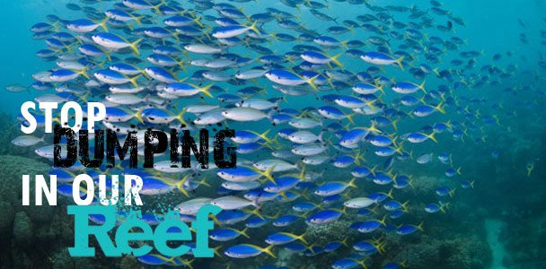 Stop-Dumping-On-Our-Reef-Fa