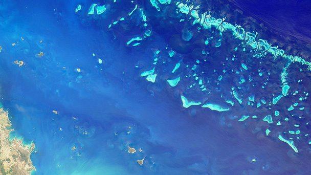 Reef-Space