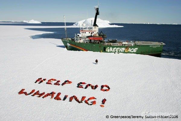 "Crews of Greenpeace ships MY Arctic Sunrise and the MY Esperanza crew uses their bodies to write ""Help End Whaling !"" on the ice of Antarctica, after completing a 2 month campaign against the whaling fleet of Japan . Southern Ocean, 20.01.2006"