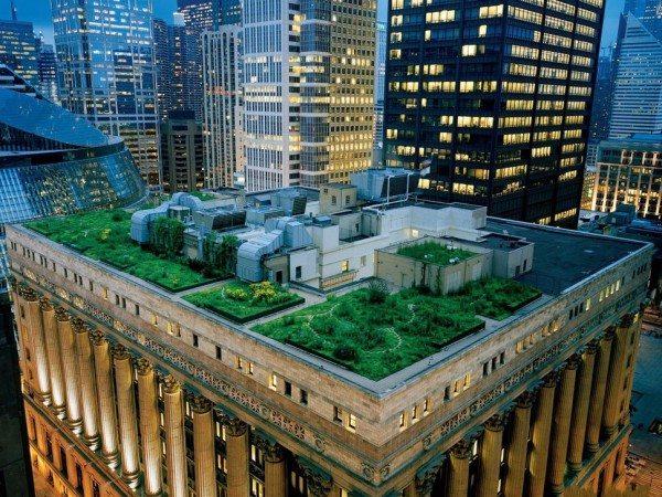 Chicago City Hall, USA