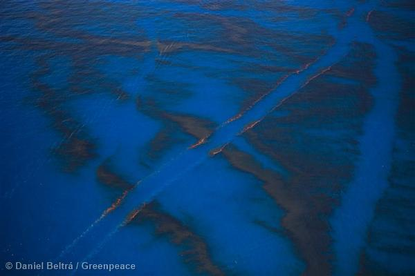 The wake of a ship is visible after it cut through the oil on the surface of the ocean near the site of the Deepwater Horizon disaster in the Gulf of Mexico.