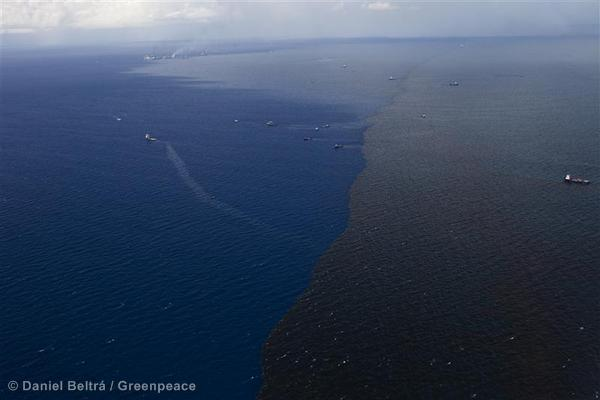 Oil from Oil Rig Disaster