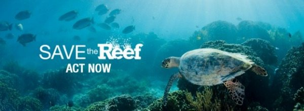 SAVETHEREEF ACT NOW RESIZE