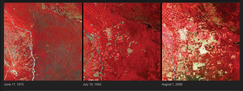 deforestation bolivia