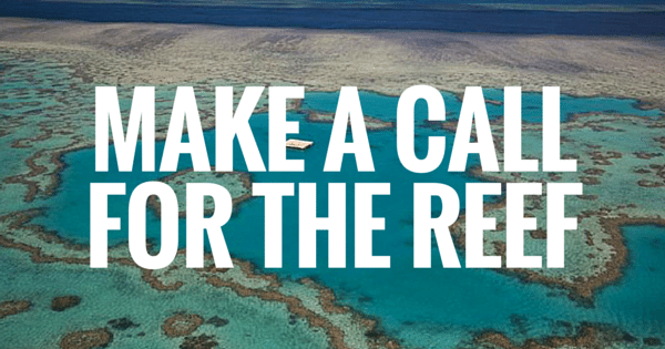 Copy of MAKE A CALL FOR THE REEF