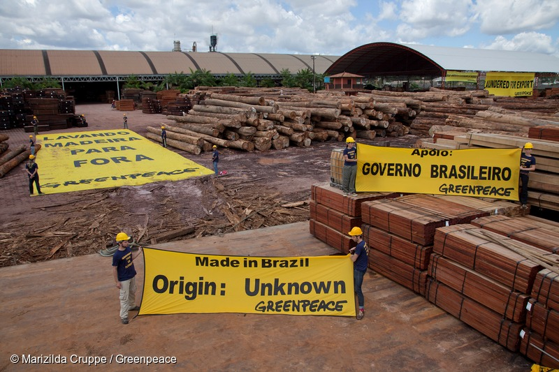 Protest against Illegal Timber in Brazil
