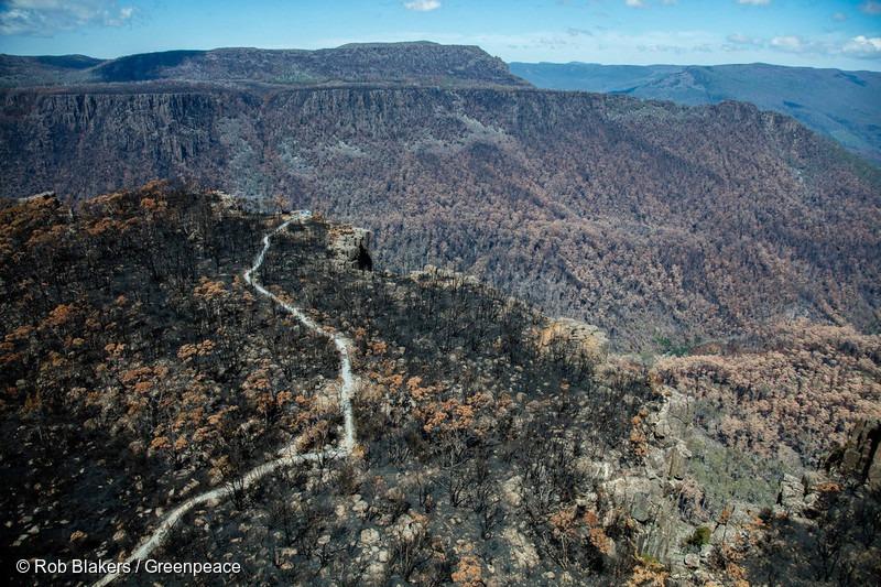 Tasmanian Forest Fire Destruction
