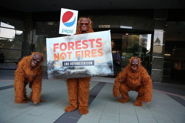 © James Alcock / Greenpeace
