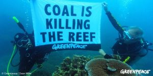 coal and reef
