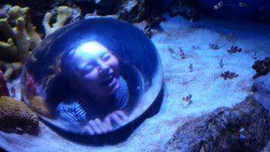 Jules being a Vernian at the Aquarium