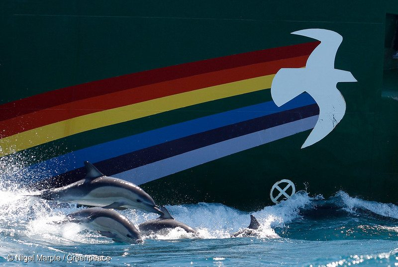 Rainbow Warrior in New Zealand