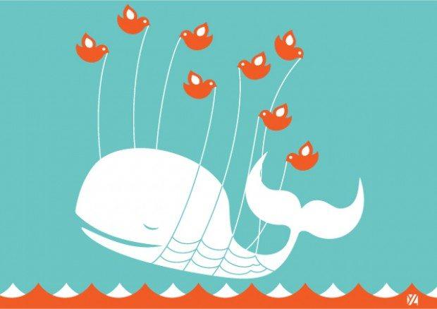 whale-fail