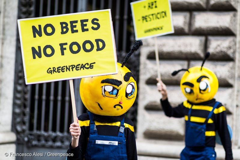 """Greenpeace activists dressed like working-bees on """"strike"""", protest in front of the Agriculture Ministry, asking for a total ban of neonicotinoid pesticides. Undici attivisti di Greenpeace travestiti da api operaie hanno inscenato uno sciopero, con tanto di picchetto, di fronte al Ministero delle politiche agricole, per chiedere il bando totale dei pesticidi neonicotinoidi. Gli attivisti hanno protestato mostrando uno striscione con la scritta """"Stop ai pesticidi – Salviamo le api"""", impugnando cartelli e scandendo slogan come """"Niente api, niente cibo""""."""