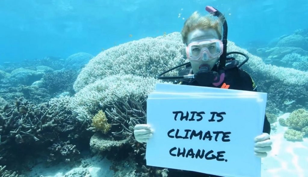 Greenpeace activist documenting bleaching on the Great Barrier Reef