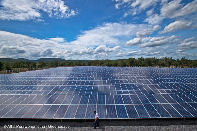 A man walks in solar farm.