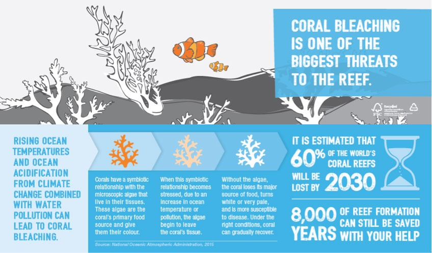 Infographic about coral bleaching