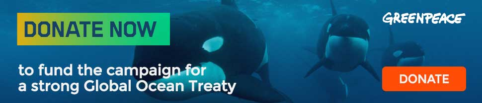 Donate now will help fund the campaign for a strong Global Ocean Treaty