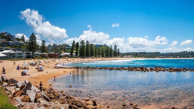 Avoca beach in NSW