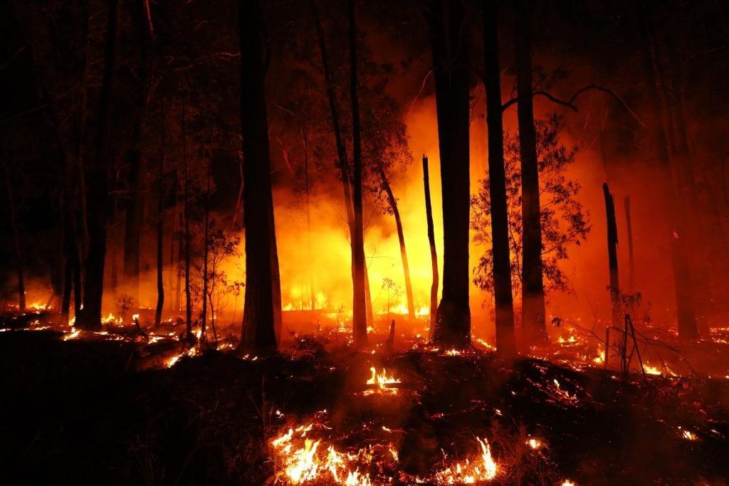 bushfires in Mallacoota